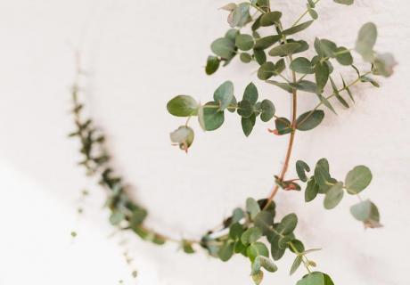 Mit Drahtkränzen und Eukalyptus setzt du grüne Akzente in deine Babyparty-Deko © juliafashionblonde